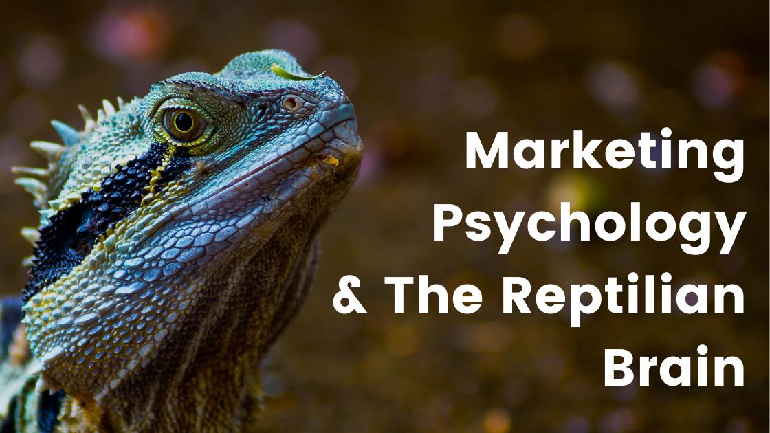 Marketing Psychology & The Reptilian Brain image