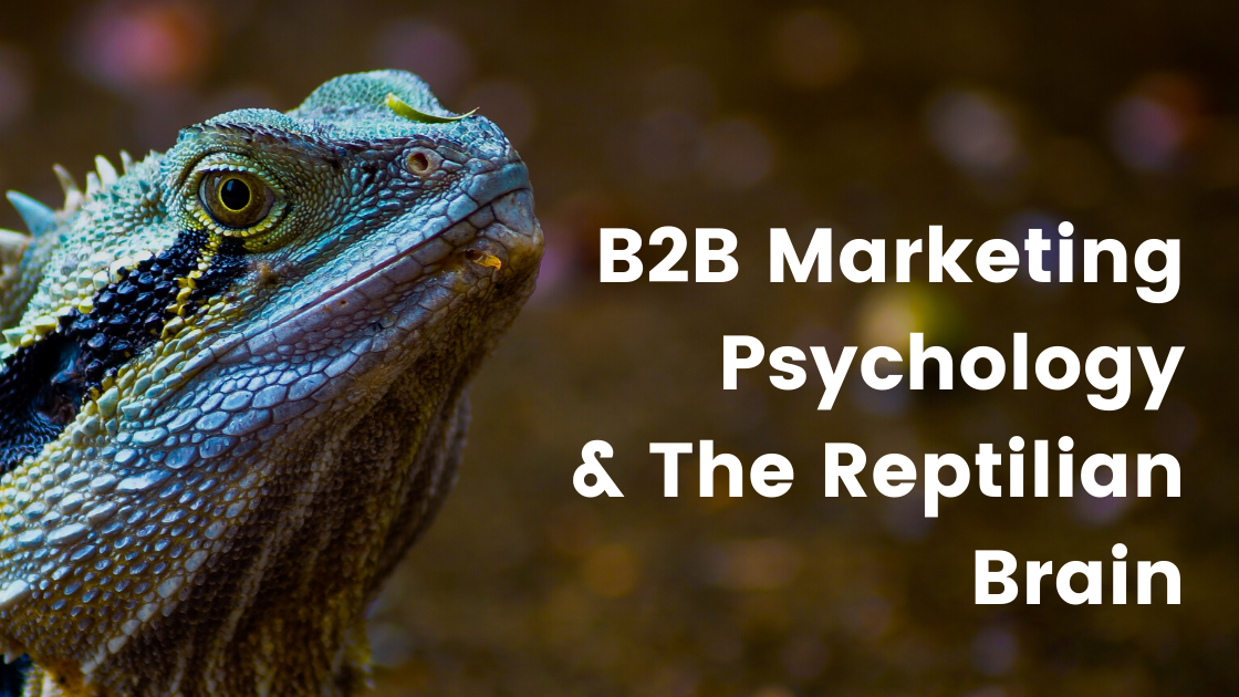 B2B Marketing Psychology & The Reptilian Brain image